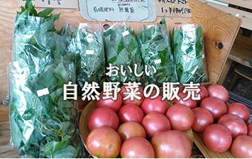 おいしい自然野菜の販売・いろいろな自然野菜も取り揃えています